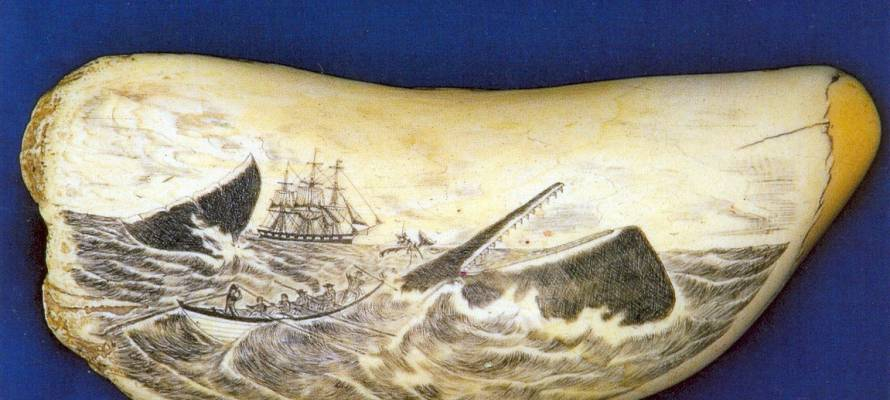 1422421986_085-scrimshaw-whale-tooth-azores-tif1.jpg